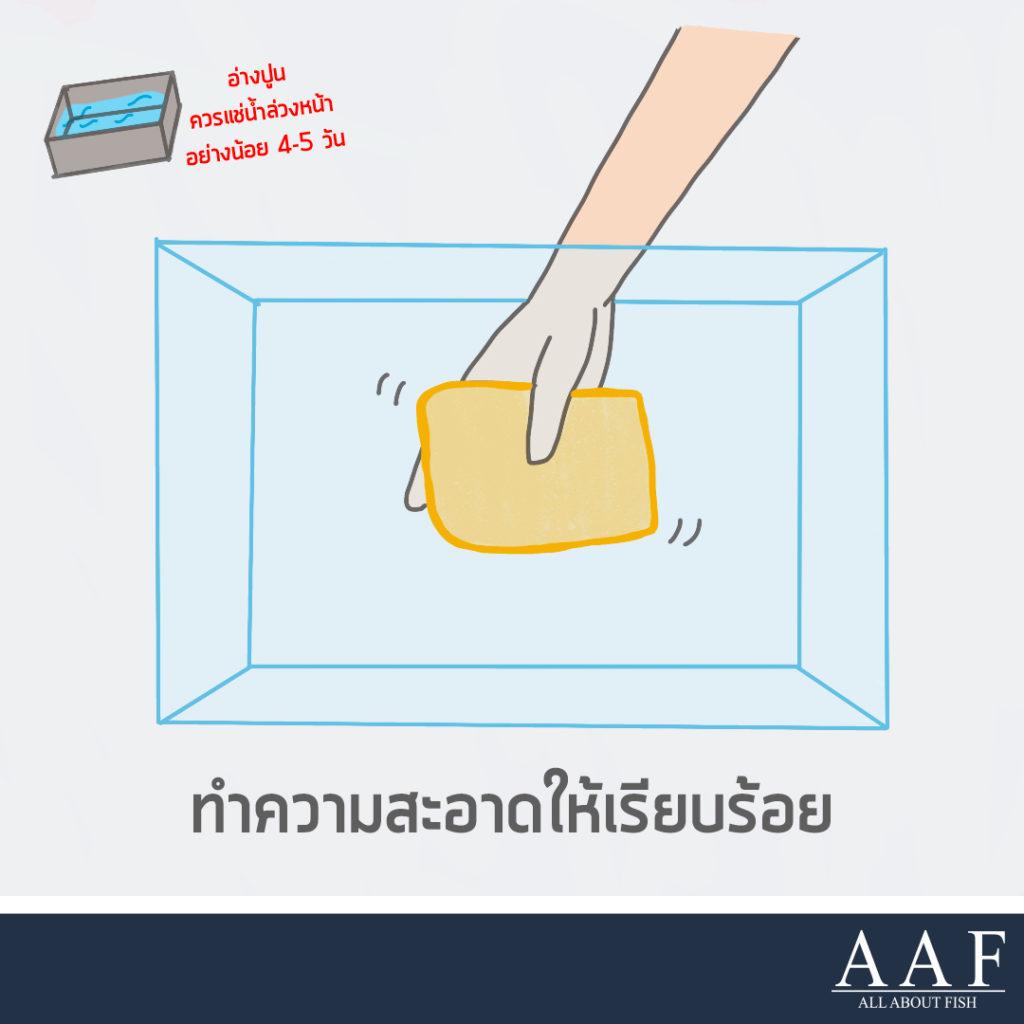 การปล่อยปลาใหม่ลงตู้